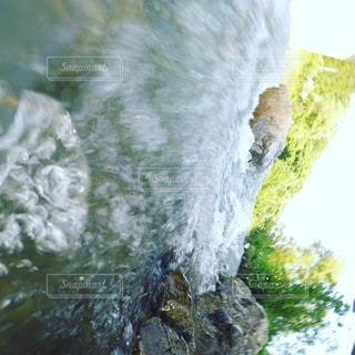 夏の写真・画像素材[646203]