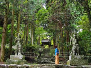 大分県国東市両子寺の写真・画像素材[917516]
