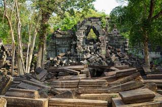 風景,森,アジア,樹木,旅行,遺跡,東南アジア,石,カンボジア,海外旅行,ジャングル,崩壊