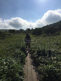 草で覆われた丘の上に立っている人の写真・画像素材[765889]