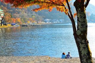 湖を見る2人の写真・画像素材[1636247]