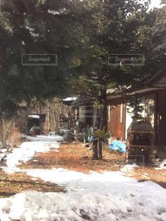 雪景色の庭にある手作りの窯 - No.747856