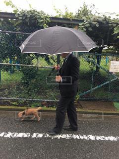 雨の中犬を散歩している人の写真・画像素材[816721]