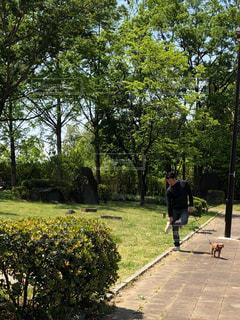 公園を歩いて人々 のグループの写真・画像素材[1163982]