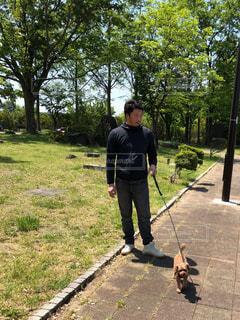 愛犬のお散歩の写真・画像素材[1163985]