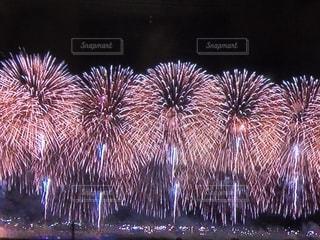 夏の夜空に上がる花火の写真・画像素材[1350301]
