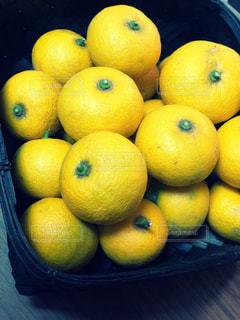 黄色,ゆず,柚子,yellow,柑橘系
