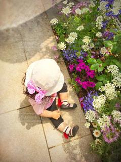 お花にみとれてる女の子 - No.713428
