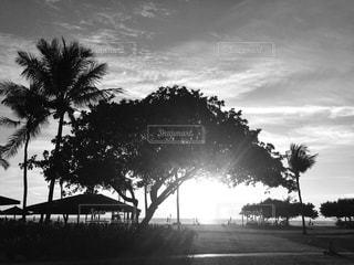 コタキナバルの夕暮れ時の写真・画像素材[813492]