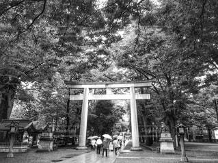 雨の日、神社にの写真・画像素材[819141]