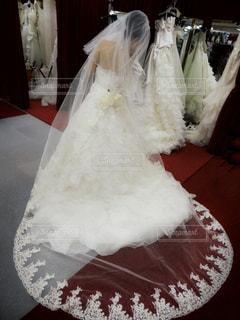 ウェディングドレスとロングベールの写真・画像素材[824537]