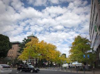 大通りの風景の写真・画像素材[871548]