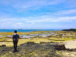 海を眺めている人の写真・画像素材[928147]
