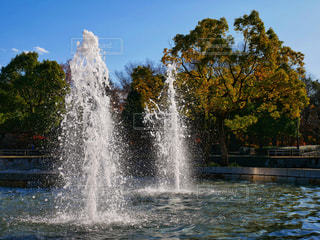 きらきら水しぶきの写真・画像素材[931119]