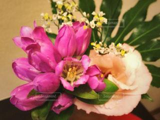 花の写真・画像素材[961181]