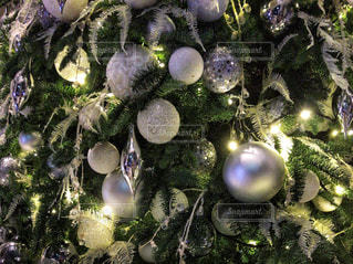 冬,ライト,キラキラ,クリスマス,クリスマスツリー,ホワイト,シルバー,Xmas,オーナメント