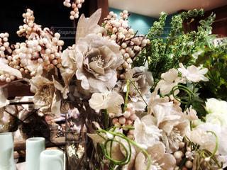布の花の写真・画像素材[966261]