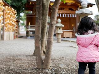 神社にお参りの写真・画像素材[995200]