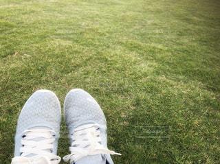 公園,靴,芝生,緑,足元,人物,スニーカー,足下,足もと,履物