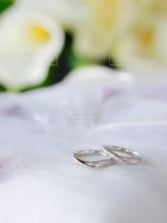 結婚指輪の写真・画像素材[1233844]