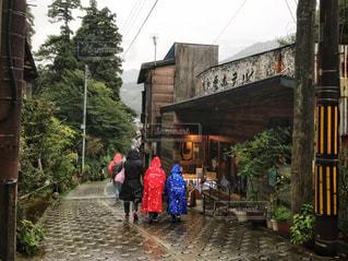 雨の宮ノ下の写真・画像素材[1241823]