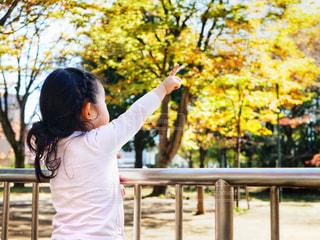 公園,紅葉,キッズ,屋外,女の子,樹木,人,フェンス,未来,こども,幼児,2歳,見つめる,夢,指差し,ポジティブ,希望,目標,やる気,前向き,可能性,意思