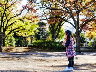 公園で遊ぶ少女の写真・画像素材[1590727]