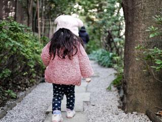 森の中を歩く女の子の写真・画像素材[1689806]