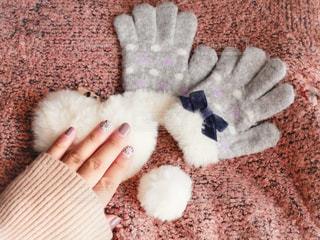 冬の装い♫の写真・画像素材[1750453]