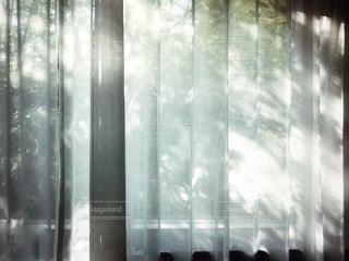 木洩れ日の写真・画像素材[2164759]