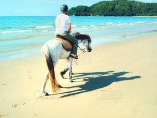 浜辺で馬に乗る人の写真・画像素材[2264100]