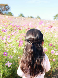 花畑に立つ女の子の写真・画像素材[2461230]