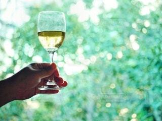 手,ガラス,手持ち,樹木,人物,逆光,人,ワイン,グラス,記念日,ポートレート,乾杯,アルコール,ライフスタイル,旅先,お出かけ,手元,ワイングラス,玉ぼけ,片手,かざす