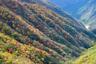 紅葉,中禅寺湖,栃木,竜頭の滝