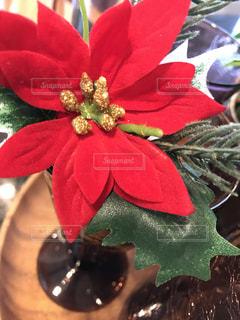 インテリア,雪,赤,家,キラキラ,クリスマス,クリスマスツリー,柊,ヒイラギ