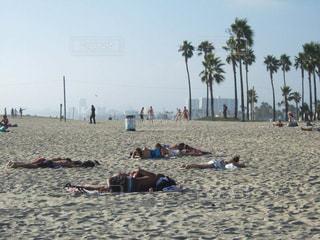 砂浜のビーチで横になっている人々 のグループの写真・画像素材[1001045]