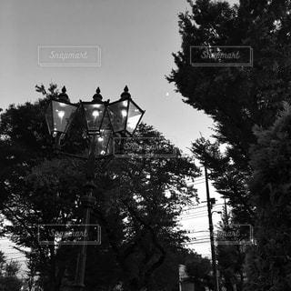 ガス灯のある景色の写真・画像素材[853115]