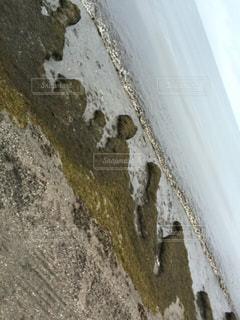 海の写真・画像素材[651022]