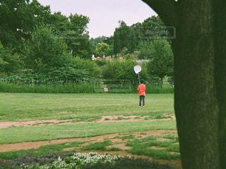 公園の写真・画像素材[660608]