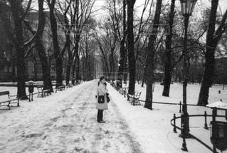 ポーランド 寒い朝の写真・画像素材[704878]