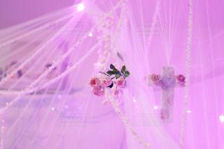 ピンクの画面の写真・画像素材[849674]