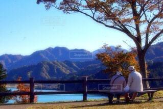 水の体の前にあるベンチの写真・画像素材[3713850]