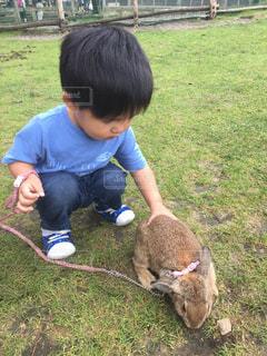 草の中に立っている小さな男の子 - No.721213