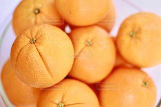 オレンジオレンジオレンジの写真・画像素材[3164743]