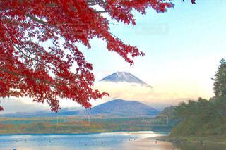 背景の山と木 - No.875864