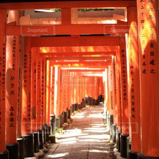 大きなオレンジ色の建物の写真・画像素材[907757]