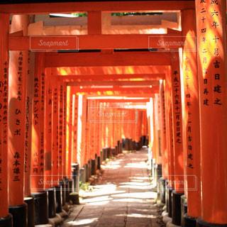 ビルを背景に、伏見稲荷大社と大オレンジの写真・画像素材[1014350]