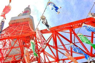 橋の上を飛んでクレーンの写真・画像素材[1014351]