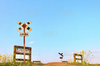 信号機の上サインの写真・画像素材[1014373]