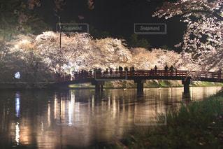 水の体の上の橋の写真・画像素材[1147645]